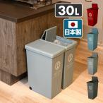 ゴミ箱 30リットル ふた付き おしゃれ スリム スライドペール 30L フタ付き ごみ箱 ダストボックス 分別 ペール