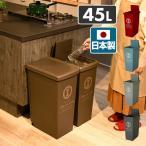 ゴミ箱 45リットル ふた付き おしゃれ スリム スライドペール 45L フタ付き ごみ箱 ダストボックス 分別 ペール