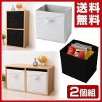 ショッピング収納ボックス 収納ボックス 2個セット A4対応 A4カラーボックス対応 カラーボックス インナーボックス 2個組