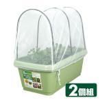菜園プランター720&支柱・防虫ネットセット(2個組) GP-66