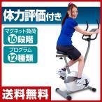 プログラムマグネティックバイク SE9500P【あすつく】