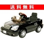 セルシオ(電動バッテリーカー) NCE-B