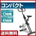 マグネットXバイク SE9000 クロスバイク エクササイズバイク フィットネスバイク【あすつく】