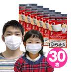 ショッピングN95 高機能マスク モースプロテクション 30枚(5枚入×6袋) N95より高性能N99マスク 送料無料