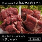 ラム肉 ジンギスカン あおやまジンギスカンお試しセット