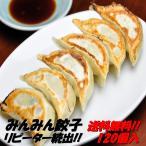 ショッピングギョーザ 餃子120個 餃子専門店みんみん ぎょうざ ギョーザ 富山 送料無料