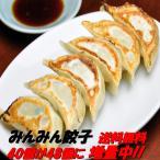 餃子48個 餃子専門店みんみん ぎょうざ ギョーザ 富山 送料無料