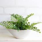 アジアンタム 舟型 H17  観葉植物 造花 インテリア CT触媒 ミニ フェイクグリーン 10P03Dec16