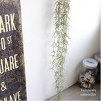 スパニッシュモス 造花 観葉植物 フェイクグリーン インテリア CT触媒