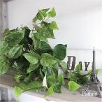 ポトスブッシュ 観葉植物 フェイクグリーン 造花 インテリア 光触媒 CT触媒 315