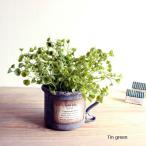 ハートシェイプグリーン ブリキマグポット Herat green  フェイクグリーン 造花 インテリア CT触媒 観葉植物
