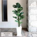 造花 観葉植物 フェイクグリーン 光触媒 CT触媒