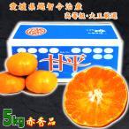 甘平 かんぺい 愛媛県産 ご当地 希少 ブランド みかん 旬 通販 送料無料 甘平 赤秀 5kg 大玉
