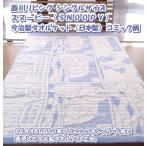 西川リビング シングルサイズ スヌーピー(SNOOPY)今治製タオルケット(日本製)コミック柄