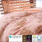 西川リビング ダブルサイズ ゴアテックス 羽毛掛け布団(ロイヤルスター)(日本製)ポーランド産ホワイトマザーグースダウン95%