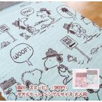 【2枚セット】西川 スヌーピー SNOOPY タオルケット シングルサイズ 大人用 綿100% 洗える