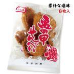 亀の甲せんべい 9枚入 沖縄 土産