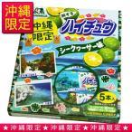 沖縄限定 ハイチュウ シークワーサー 12粒×5本入 (ゆうメール可能) 沖縄土産 お菓子
