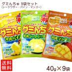 選べるグミんちゅ10袋セット(シークワサー・パイン・マンゴ)  (送料無料メール便)
