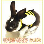 e-petyasan_ranran-harnesswear-bee