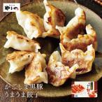 やまや かごしま黒豚うまうま餃子(九州 お取り寄せ)