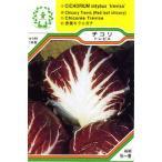 【DM便可】●ハーブ・西洋野菜の種 「チコリ トレビス」