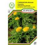 【DM便可】ハーブ・西洋野菜の種 「ダンデライオン」