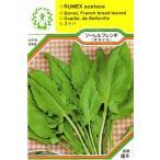 【DM便可】●西洋野菜の種 「ソーレル フレンチ (オゼイユ)」