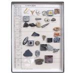 化石コレクション30種