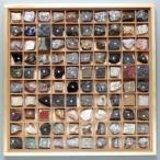 岩石標本 100種セット