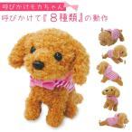 ロボット 犬 犬型ロボット よびかけアクション愛犬モカちゃん 6C181 アイデア 便利 アイデア商品 アイデア雑貨 送料無料