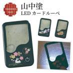 拡大鏡 ルーペ 5倍 LEDライト付き おしゃれ 明るい 虫眼鏡 カードルーペ  記念品