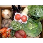 【送料無料*一部地域を除く】九州産・豊の国旬の野菜詰め合わせお試しセット 8品目以上