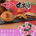 敬老の日 鉢植えセット「村中甘泉堂 寿どらやき」