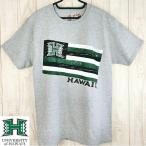 ハワイ大学公認Tシャツ University of HAWAII/Tシャツ グレー/グリーン 半袖シャツ