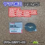 ヤマハ船外機 純正部品トリムタブ アノード 67C-45371-00