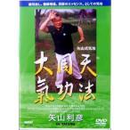 DVD 大周天 気功法