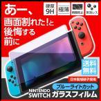 任天堂スイッチ 保護フィルム ブルーライト ガラスフィルム Nintendo Switch