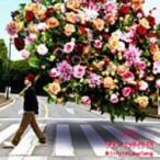 ナオト・インティライミ/ありったけのLove Song