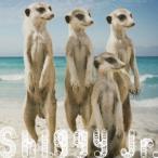 Shiggy Jr./サマータイムラブ