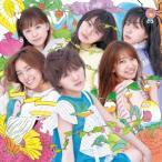AKB48/サステナブル(Type C)(通常盤)(DVD付)