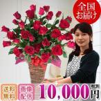 ebina-youran_bsk-rose-10000