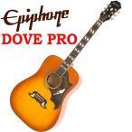 エピフォン Epiphone Dove PRO アコギ エレアコ アコースティックギター