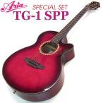 アコースティックギター 初心者 ARIA TG-1 SPP 9点 セ