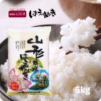 米 5kg はえぬき 山形県産 お米 5kg 令和2年産 精米 白米