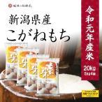 米 もち米20kg 新潟産 お米 こがねもち 令和元年産 5kg x4袋