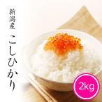 米 2kg コシヒカリ 新潟県産 お米 令和2年産 精米 白米