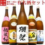 日本酒 飲み比べセット 純米大吟醸入 獺祭純米大吟醸45 越乃寒梅 八海山 当店限定酒を飲み比べ1800ml×5本