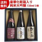 お中元 御中元 ギフト 日本酒 新しい味 新潟日本酒セット720ml×3本 あすつく対応