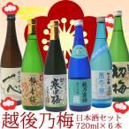 日本酒 飲み比べ セット 越後乃梅 日本酒セット720ml×6本 日本酒 純米酒 飲み比べセット